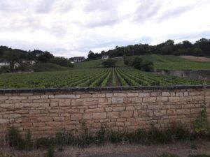Tour de la Bourgogne à vélo – Jour 4